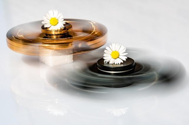 neposeda spinner