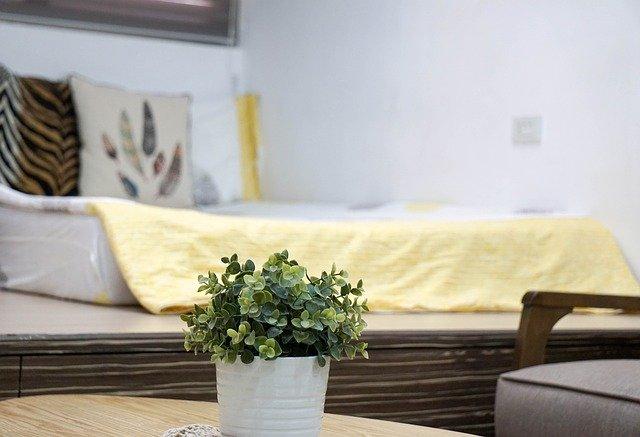 květiny u postele
